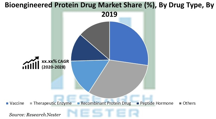 Bioengineered Protein Drug Market Share