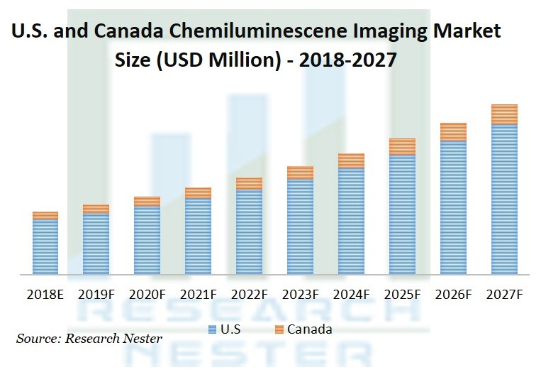 Chemiluminescence Imaging Market