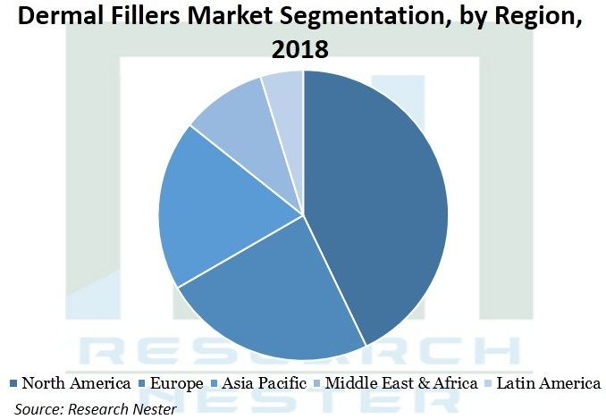 Dermal-Fillers-Market-Segmentation