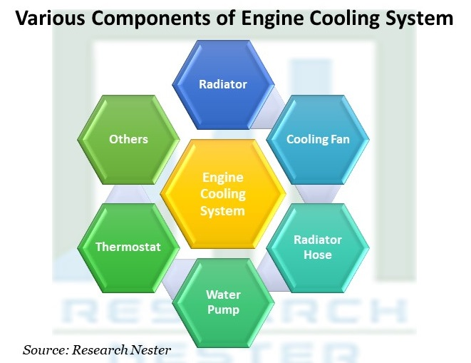 Various Components of Engine Cooling System