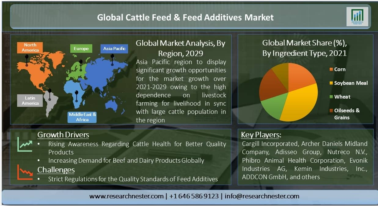 Global-Cattle-Feed-and-Feed-Additives-Market