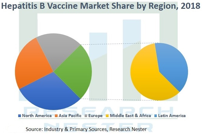 Hepatitis B Vaccine Market Graph