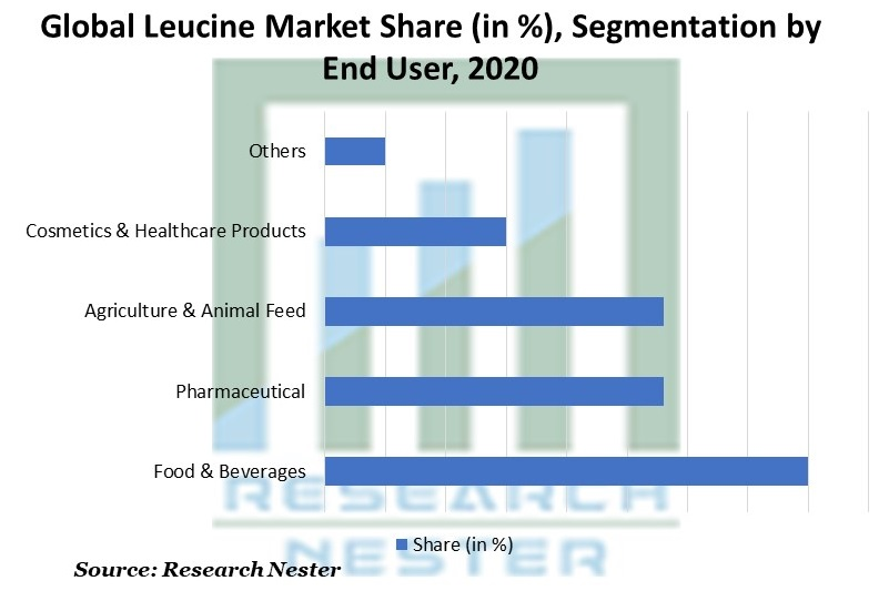 Leucine Market Share, Segmentation by End User
