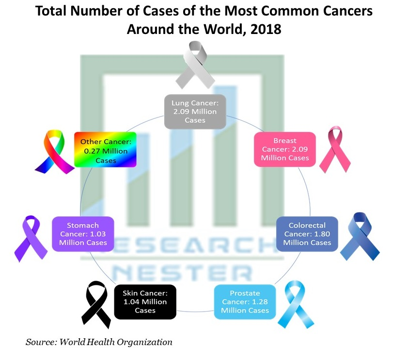 Total Number of Cases of the Most Common Cancers Around the World
