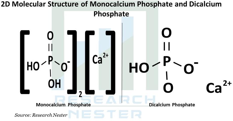 2D Molecular Structure Graph