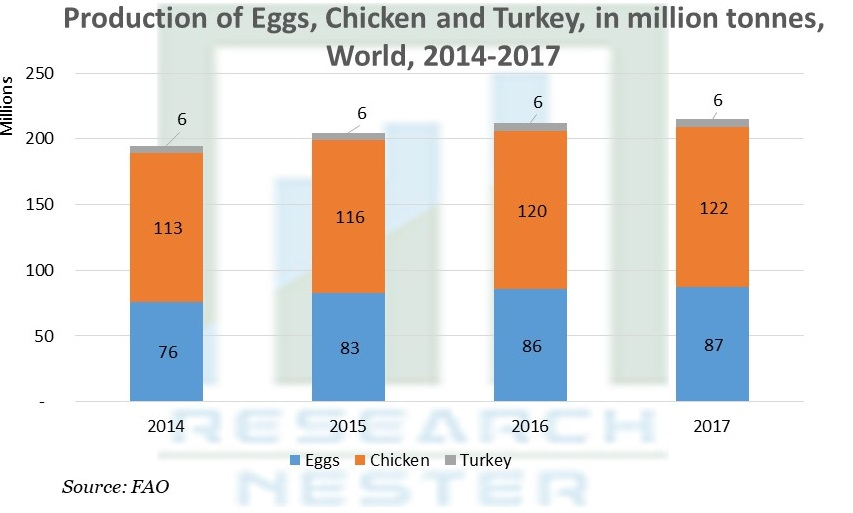 Production of Eggs, Chicken and Turkey