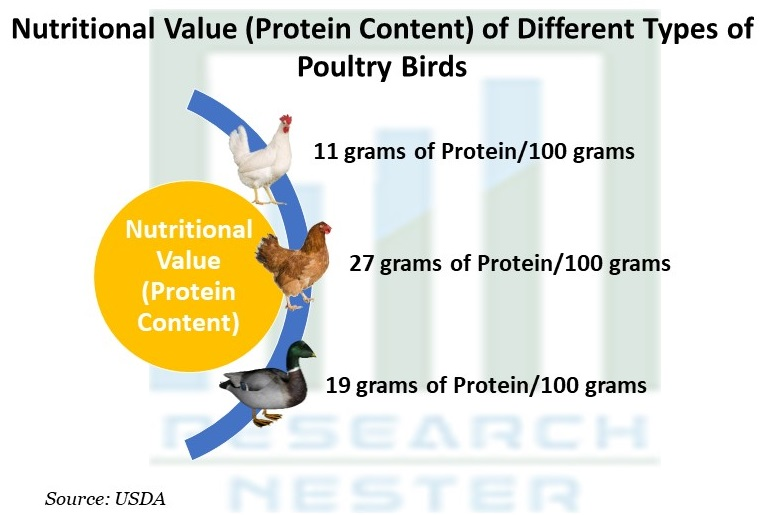Nutritional Value (Protein Content)