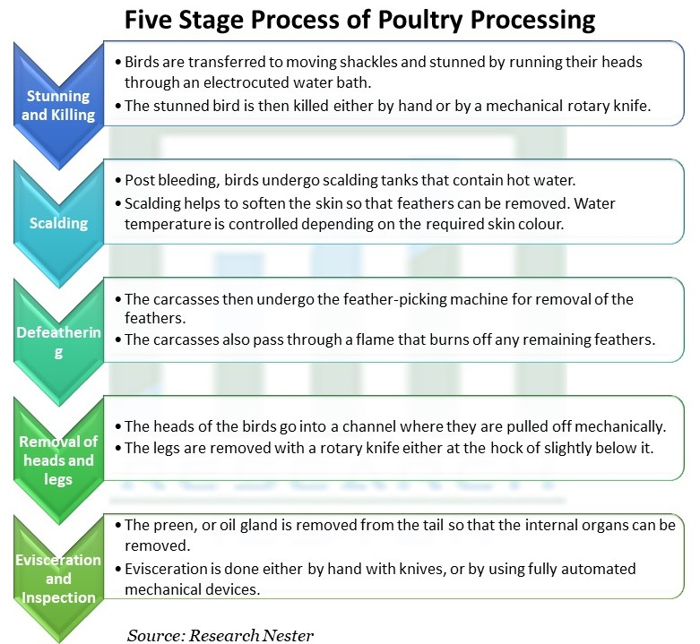 Five Stage Process of Poultry Processing