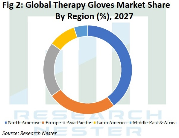 Therapy Gloves Market Graph