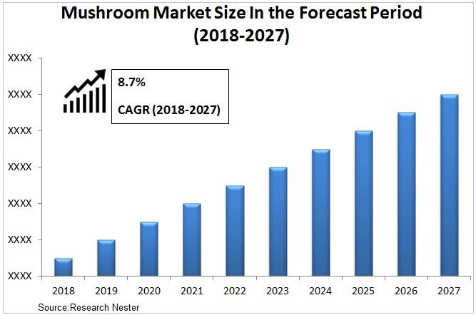 mushroom market Graph